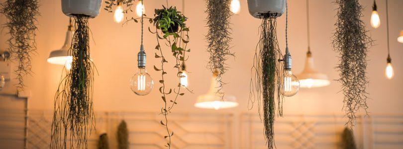 Carole Ferreira-Cerca : le site d'un expert en décoration