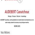 Audebert Caoutchouc, multi spécialiste de la transformation des élastomères