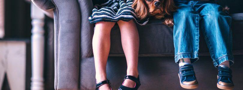 Quat Pattes, votre comportementaliste canin