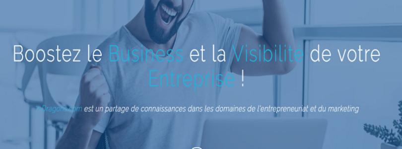 7-Dragons, guides sur l'entrepreneuriat et le marketing