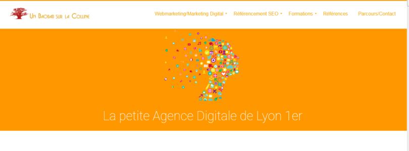 UN BAOBAB SUR LA COLLINE, Agence Digitale Lyon