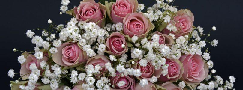 Envoi de Fleurs : de l'aide pour identifier les meilleurs fleuristes