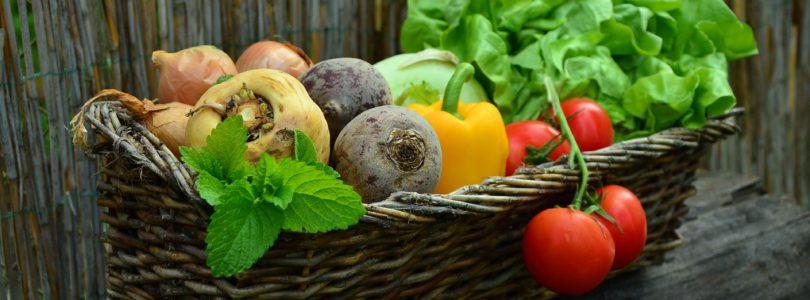 Bonneterre, pour vous procurer les produits alimentaires bio