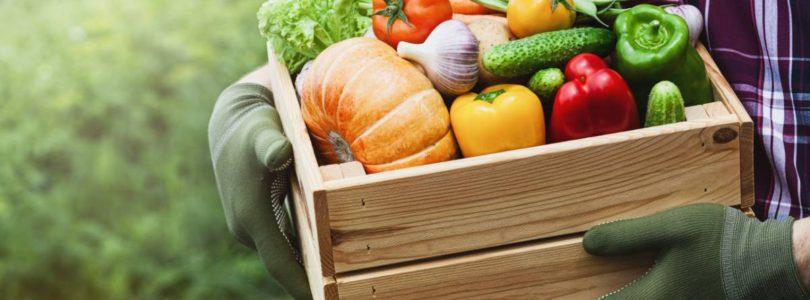 VEGETOPIE : le spécialiste des superfood et protéines vegan bio