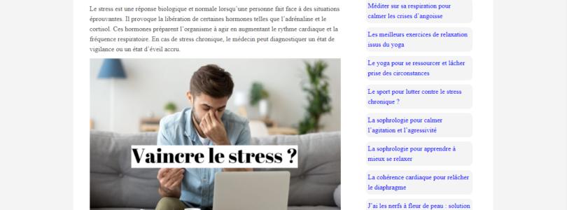 Quelles sont les causes du stress chronique?