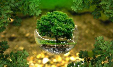 ROUSSELET Environnement : acteur engagé dans les problématiques environnementales